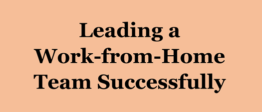 Mini Webinar: Leading a Work-from-Home Team Successfully
