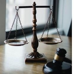 Legal Defense Fund Donation