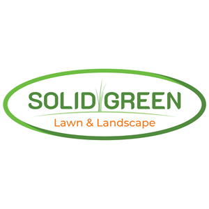 Solid Green Lawn and Landscape