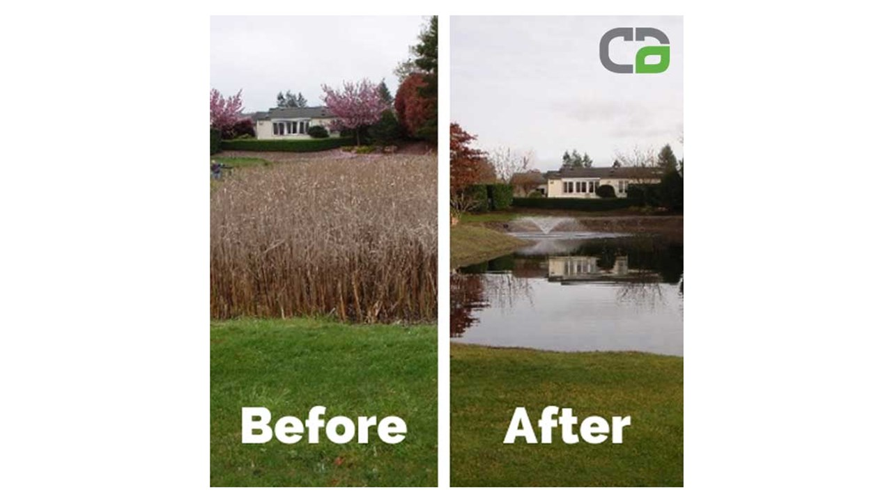 Storm Pond Maintenance