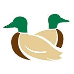Dryer Ducks